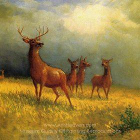 albert-bierstadt-deer-in-a-field-1.jpg