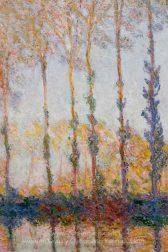 claude-monet-a-row-of-poplars-1.jpg